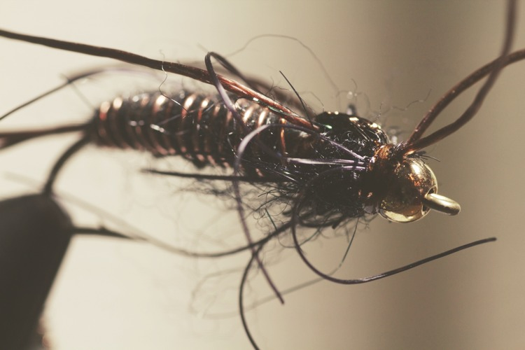 stonefly tied for fast, deep water
