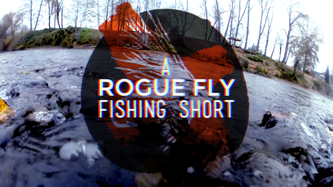 A Rogue Fly Fishing Short: Steelhead