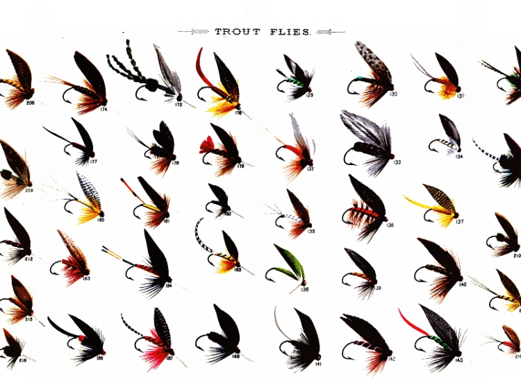 troutflies